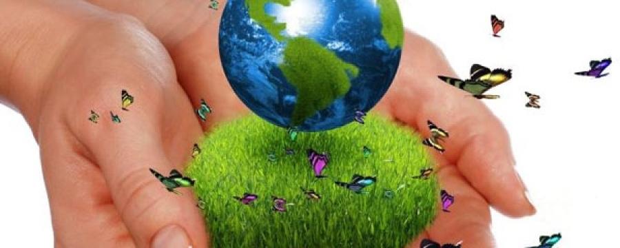 Маргааш Дэлхийн байгаль орчны өдөр