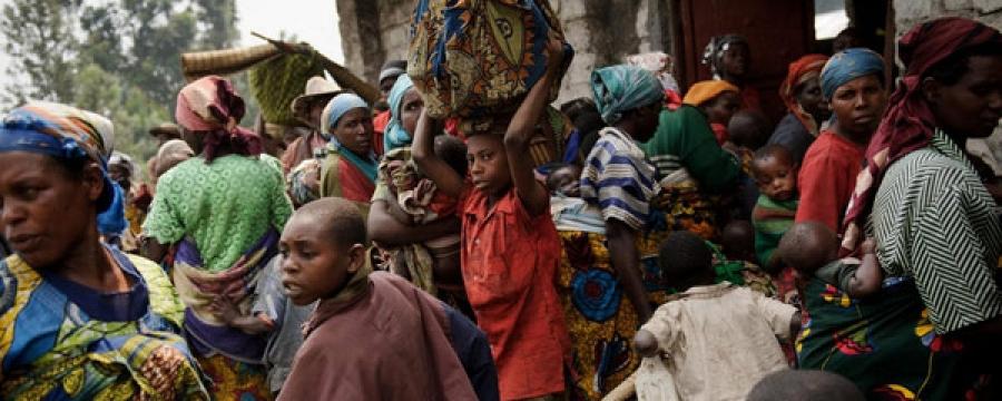 Конгод шинэ төрлийн вирус илэрчээ