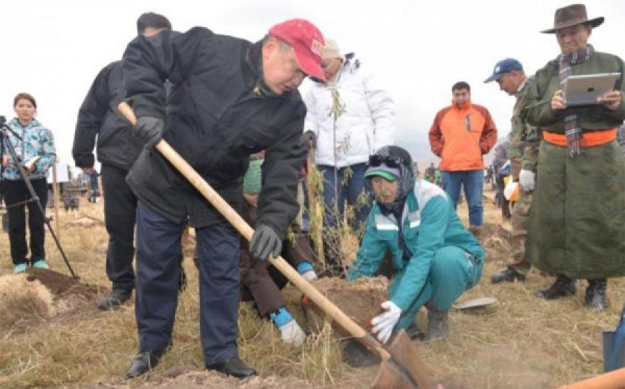 Ялалтын 70 жилийн ойд зориулсан шинэ төгөлд УИХ-ын дарга мод тарина
