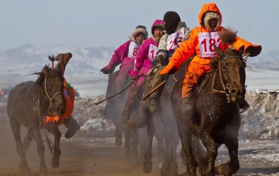 Уяачид 16-гаас дээш насны хүүхдээр морь унуулахыг эсэргүүцэв