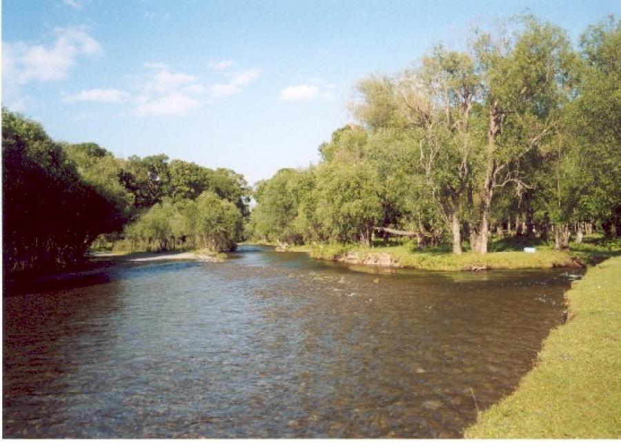 Туул, Сэлбэ голуудыг тусгай хамгаалалтад авах тухай тогтоолын төсөл боловсруулжээ