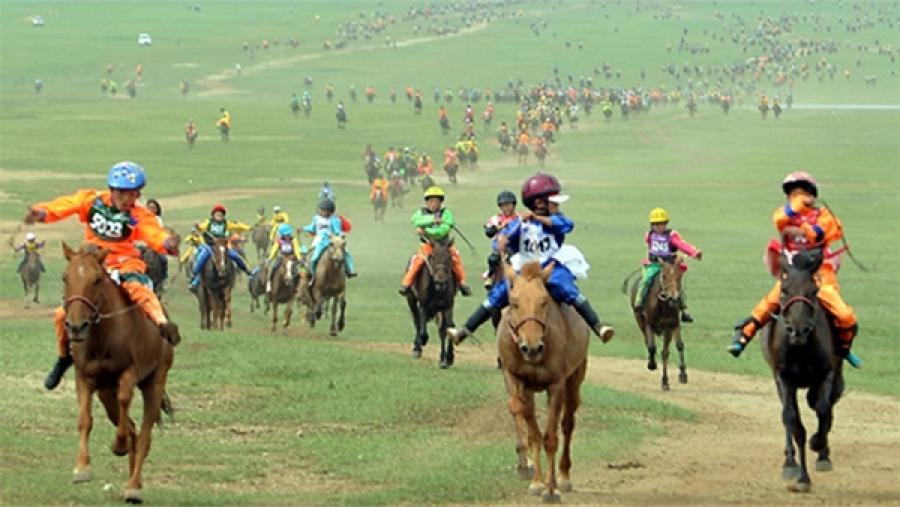 Хурдан соёолон болон дааганы уралдааны түрүүлж айрагдсан морьд