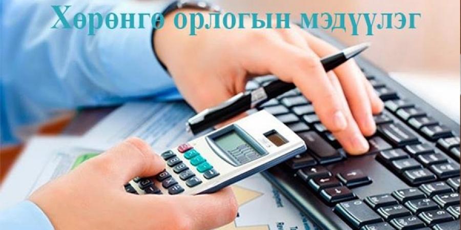 Хөрөнгө орлогын мэдүүлгийн хураангуйг ирэх долоо хоногт гаргана