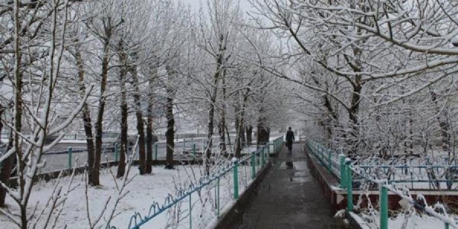 Бороо нойтон цас орж, хүчтэй салхилж шуурна