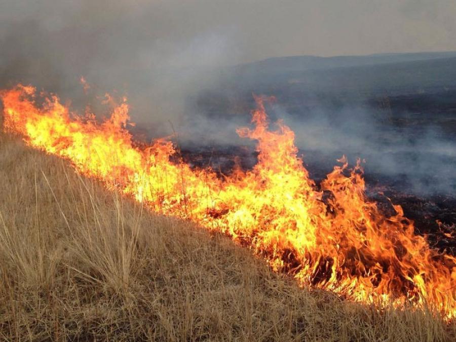 Дорнод, Сүхбаатарт гарсан түймрийг унтраахаар ажиллаж байна