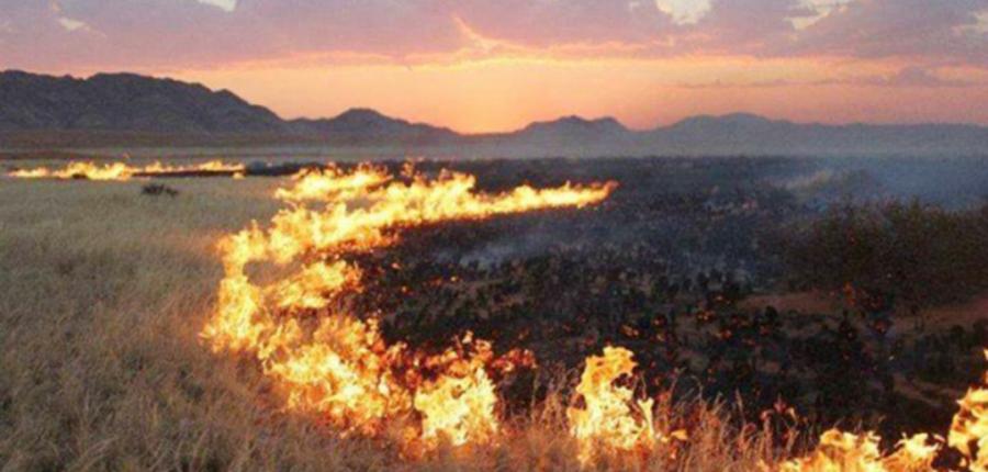 Дорнодод гарсан түймрийг бүрэн унтраахаар ажиллаж байна