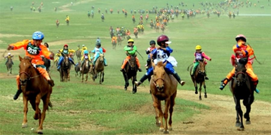 Даатгалд хамрагдаагүй унаач хүүхдүүдийг морь унуулахгүй