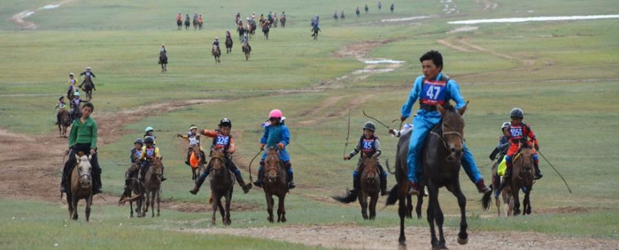 Б.Энхбаатарын хонгор халзан морь түрүүллээ
