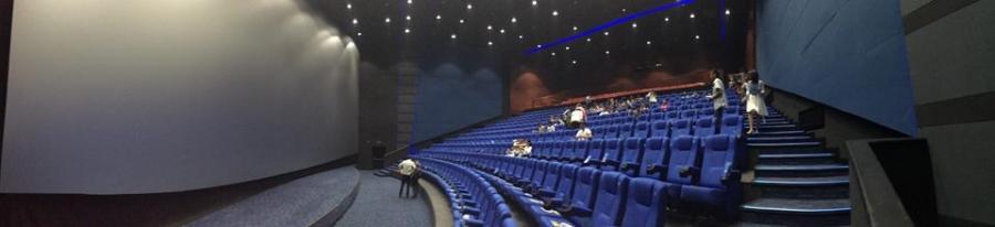 IMAX-тай танилцав