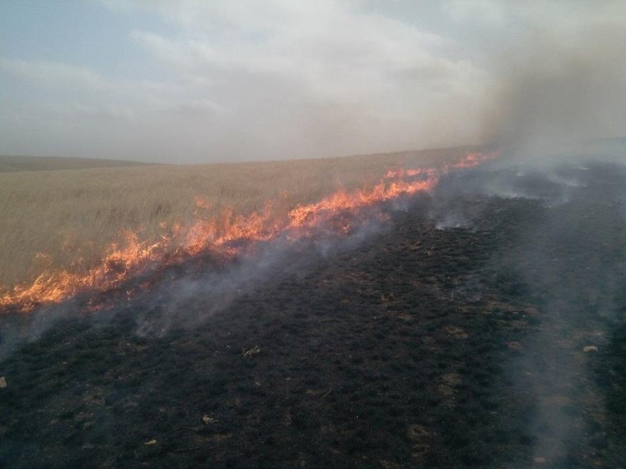 """""""Нүхт""""-д гарсан ой хээрийн түймрийг унтраажээ"""
