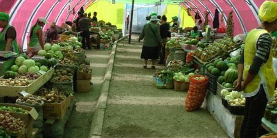 Зургаан дүүрэгт хүнсний ногооны үзэсгэлэн худалдаа гарч байна