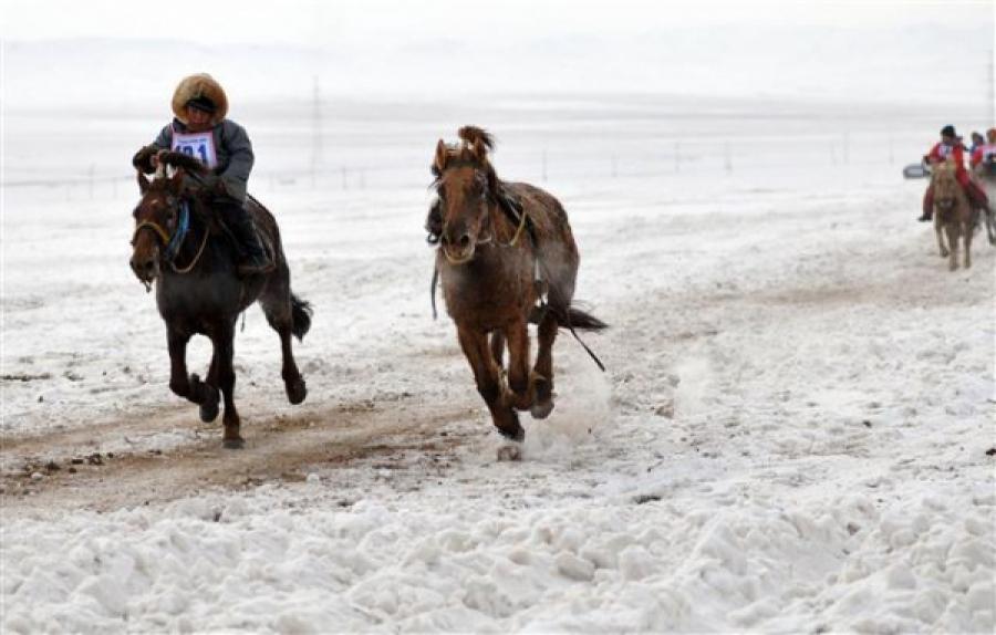 Морин уралдаан Монгол заншил биш, томчуудын зугаа, цэнгэл  болж байна