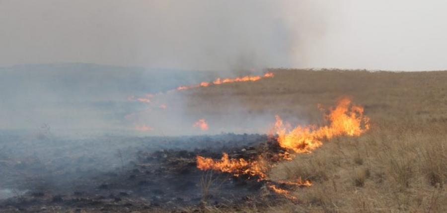 Улсын хэмжээнд 10 удаагийн түймэр гарчээ