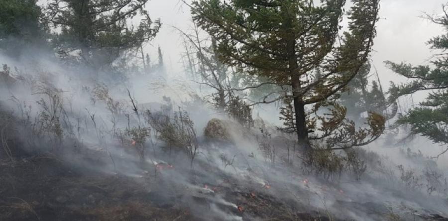 Соёмбот ууланд түймэр гарчээ