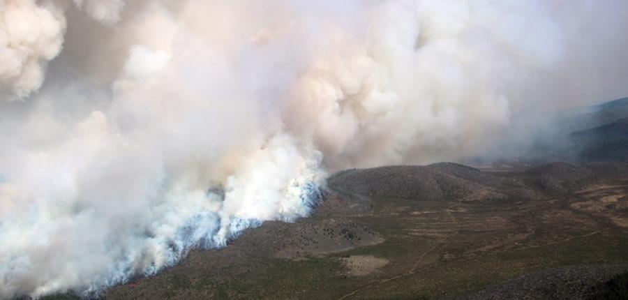 Ой хээрийн түймэрт 66 мянган га талбай өртжээ