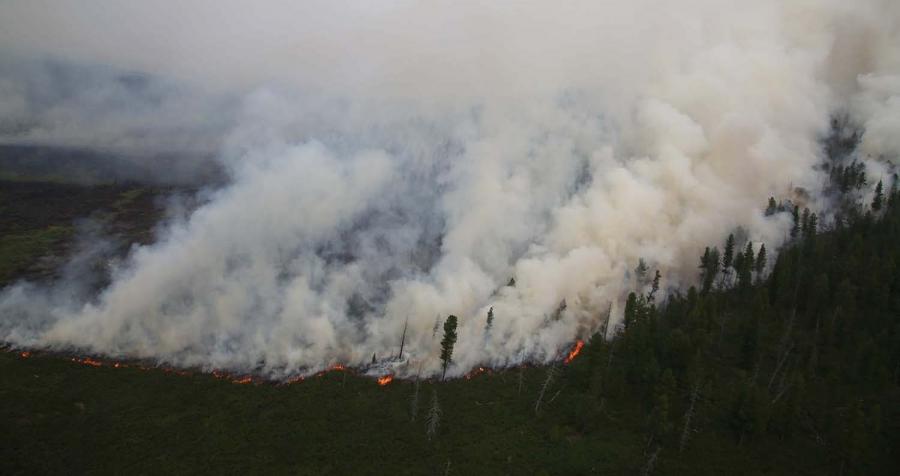 Он гарсаар 127 удаагийн ой хээрийн түймэр гарчээ