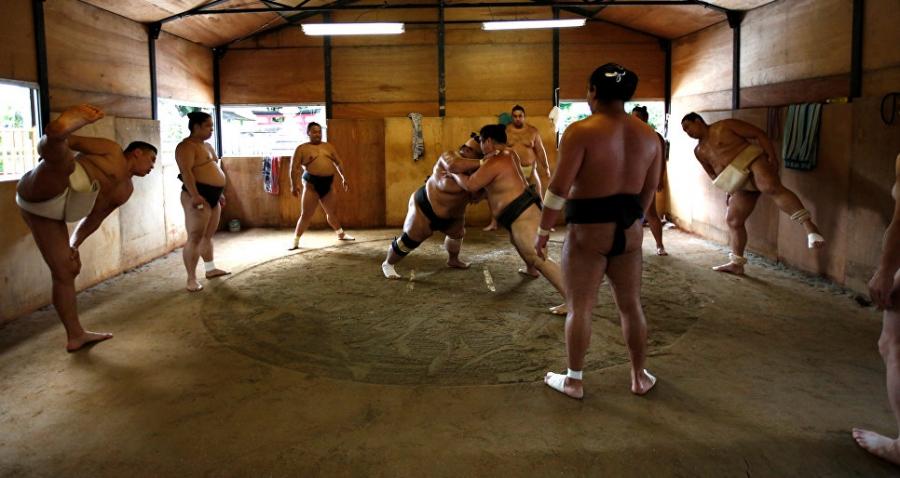 Өдөрт 20 мянган калори буюу мэргэжлийн сумочдын амьдрал