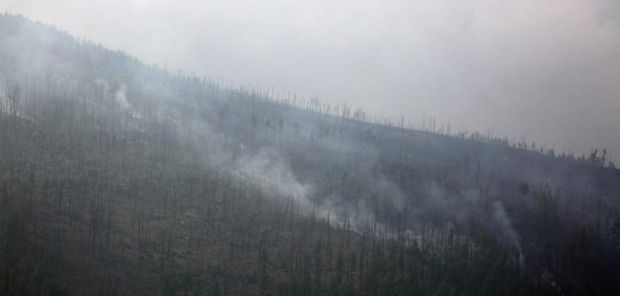 Ой хээрийн түймэрт 171 мянган га талбай өртжээ
