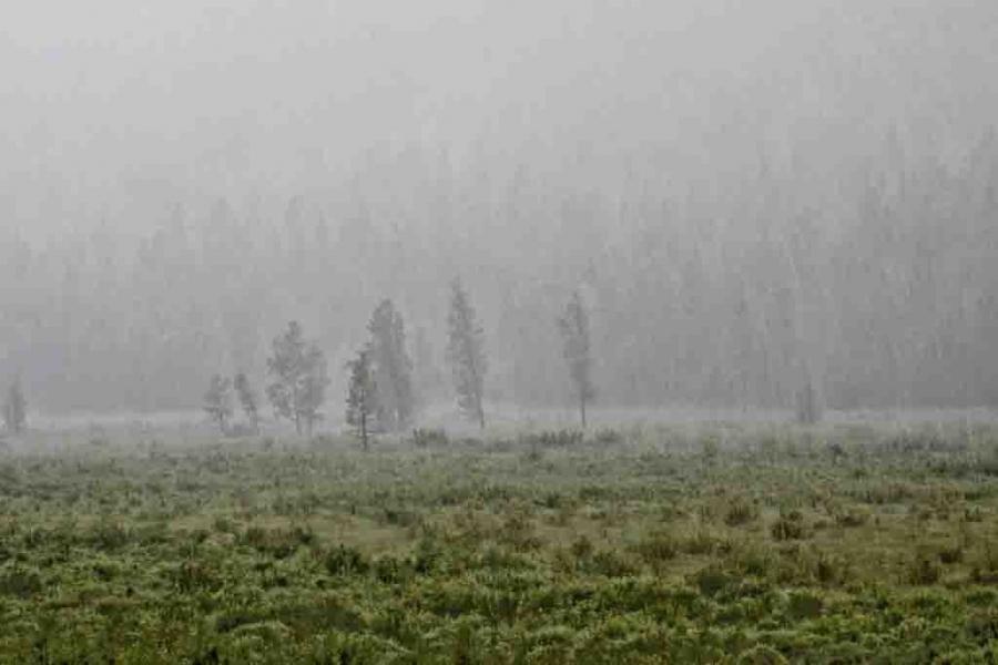 Төв болон зүүн аймгуудын нутгаар усархаг бороотой