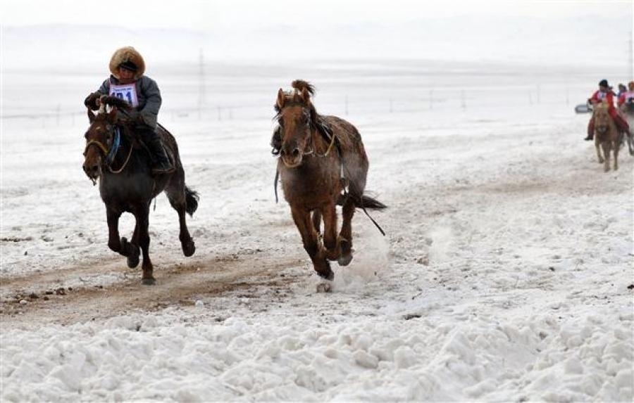 Хурдан морь унаач хүүхдийн эрхийн асуудлаар шаардлага хүргүүлэв