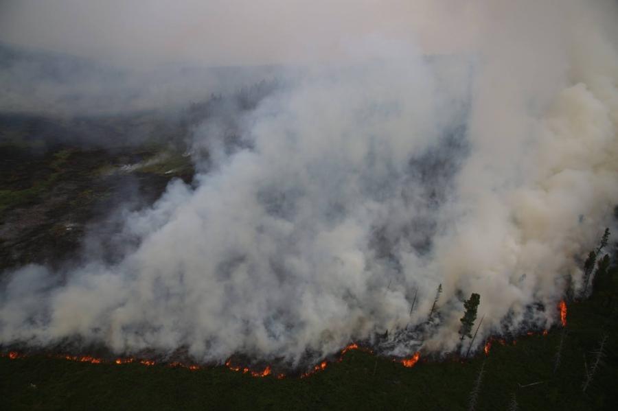 Ойн түймэрт 20 га орчим талбай шатжээ