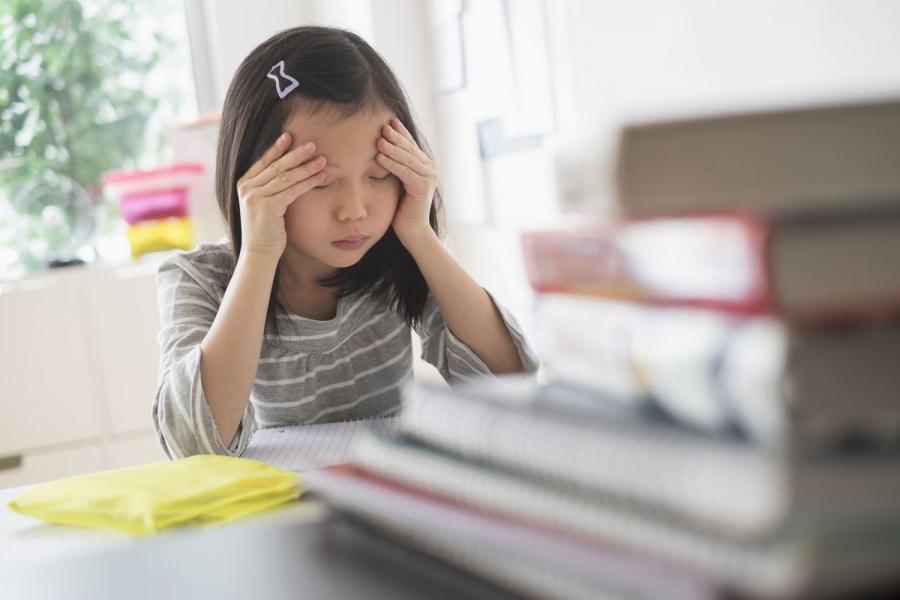 Ялгаварлан гадуурхалтаас болж хүүхдүүд стресст ордог гэв