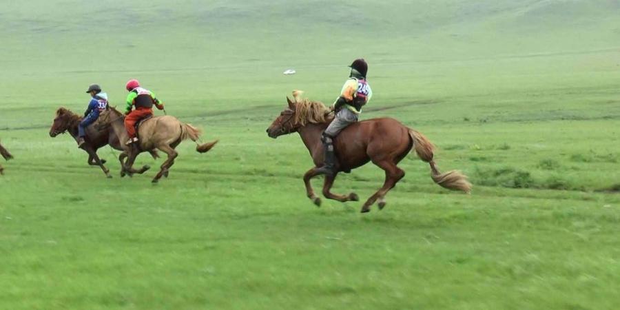 Хязаалан насны морьдын уралдаан эхэллээ