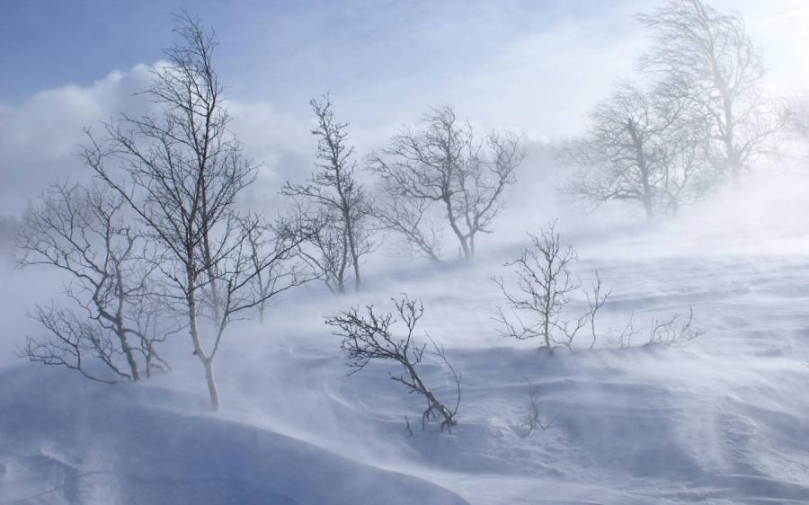 Хүйтний эрч эрс чангарахыг анхаарууллаа