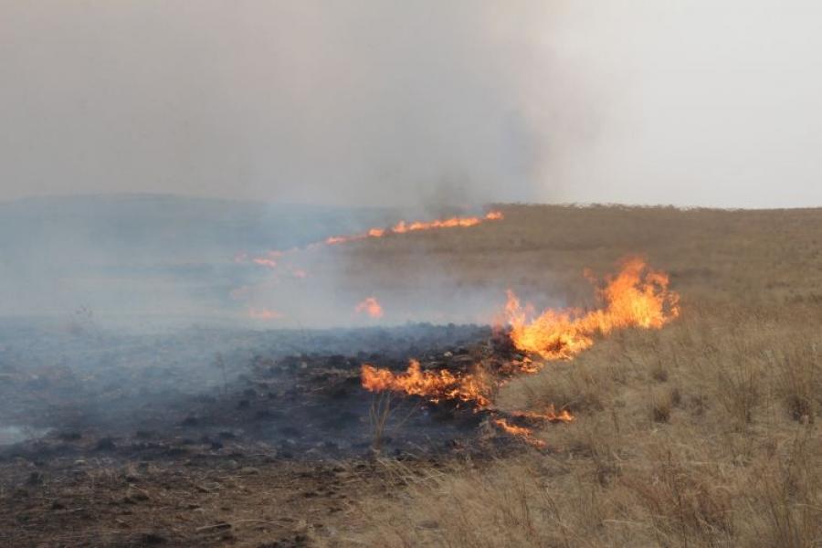 Хуурайшилт ихтэй байгаа учраас ой хээрийн түймэр гарах эрсдэлтэй гэв