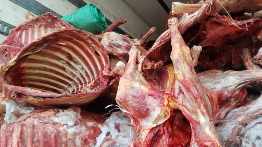 20 гаруй тонн үхрийн махны бүх бичиг баримтыг малын гавьяат эмч хуурамчаар бүрдүүлж өгчээ
