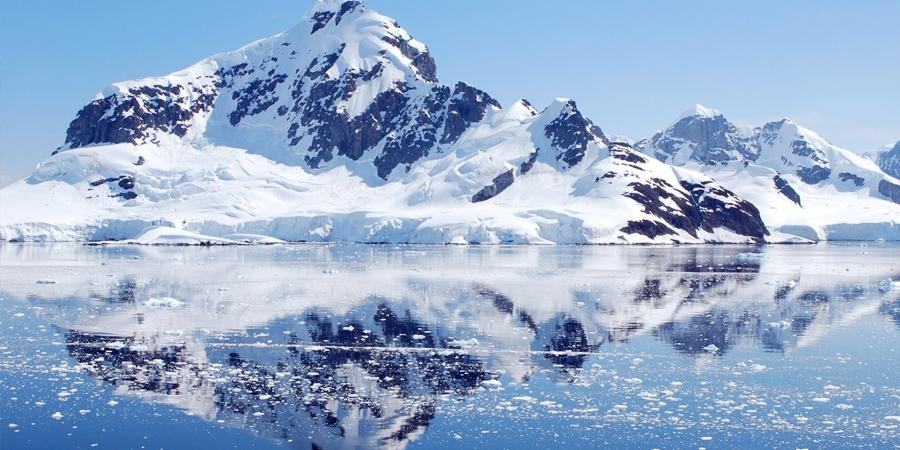 """Хоёр орны антарктидын төлөөх """"тулаан"""" ширүүсч байна"""