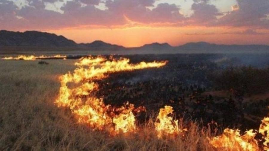 Он гарсаар 48 удаагийн ой хээрийн түймэр гарчээ