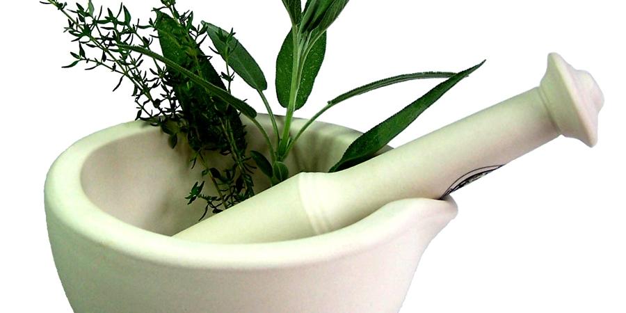 Эмийн ургамлыг хамгаалах, тарималжуулах шаардлагатай