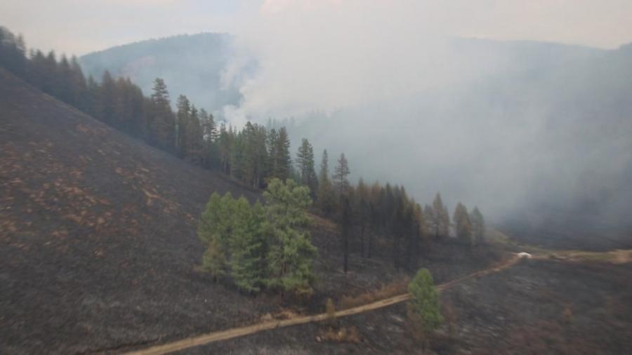 Он гарсаар 62 удаагийн ой, хээрийн түймэр гараад байна