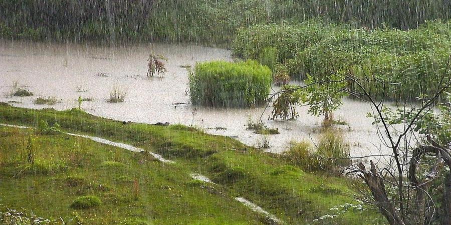 Улаанбаатарт бороотой 15-17 хэм дулаан байна