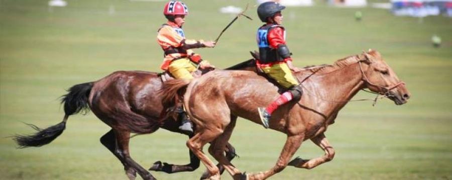 Хурдан морь унаач хүүхдээ ямар үнэлгээгээр даатгуулахаа даатгагчтай харилцан тохиролцоно