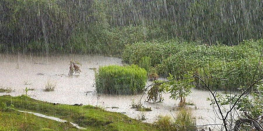 Хэнтий, Төв аймгийн зүүн, Дорнодын хойд хэсгээр ахиухан хэмжээний усархаг бороо орно