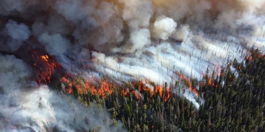 ОХУ-д өдөрт 30 түймэр унтрааж байна