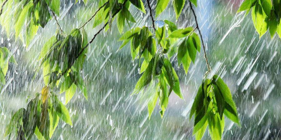 Улаанбаатарт бороотой, 19-21 градус дулаан
