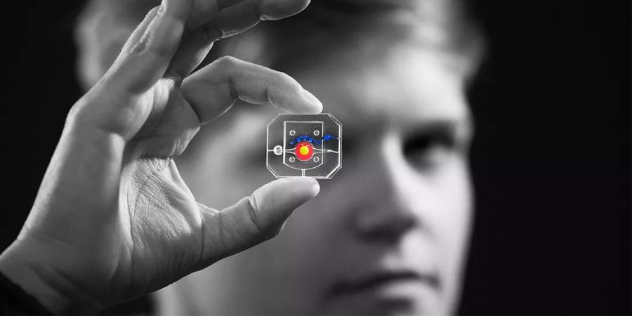 Эрдэмтэд нүдний чип бүтээжээ