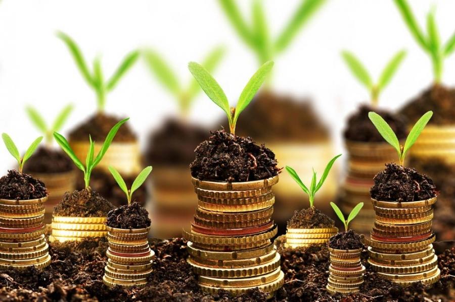 Баялгийн сан бол Үндсэн хуулийн өөрчлөлтийн гялайх ганц заалт