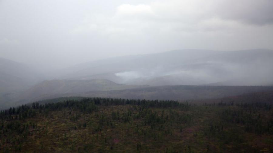 Он гарсаар 91 удаагийн ой, хээрийн түймэр гараад байна