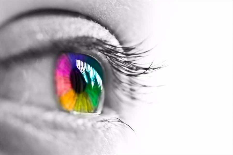 Ертөнцийн өнгийг бид хэрхэн хардаг вэ?