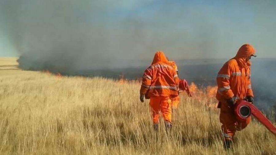 Он гарсаар 17 удаагийн ой, хээрийн түймэр гараад байна