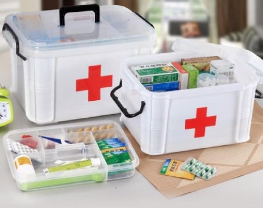 Аялал зугаалгаар явахдаа анхны тусламжийн эмийн санг заавал авч яваарай