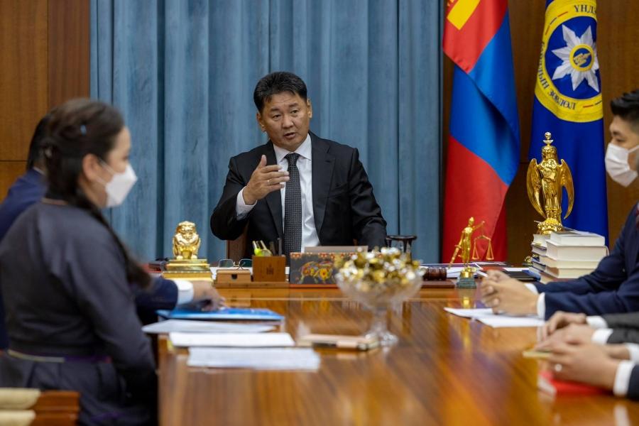 Ерөнхийлөгч Хилийн чанад дахь монголчуудын зөвлөлийн төлөөллийг хүлээн авч уулзав