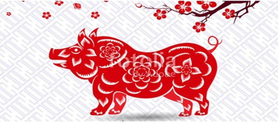 Тухайн өдөр хонь, бич, тахиа, могой, морь жилтнээ аливаа үйлийг хийхэд эерэг сайн