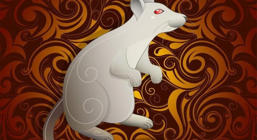 Гахай, хулгана жилтнээ сөрөг муу нөлөөтэй тул элдэв үйлд хянамгай хандаж, биеэ энхрийлүүштэй