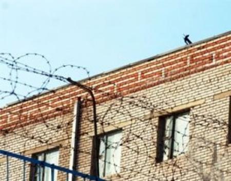 Булганы хорих ангиас оргосон этгээдийг барьжээ
