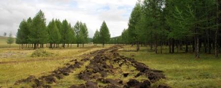 Монголын ойчид нэгэн түүхийг бүтээж байна